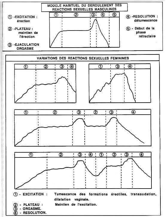 Positions sexuelles masculines et féminines