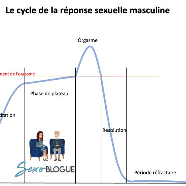 Réponse sexuelle masculine - sexoblogue